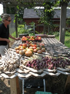 Kathy Glahn with some of her gorgeous veggies.